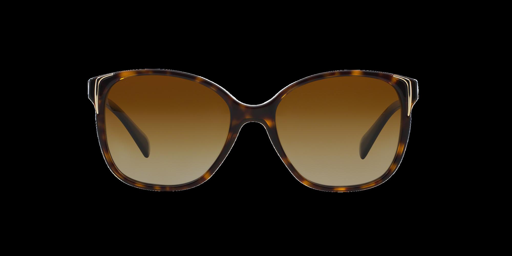 Imagen para CONCEPTUAL de LensCrafters    Espejuelos, espejuelos graduados en línea, gafas