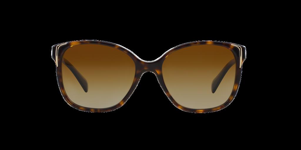 Imagen para CONCEPTUAL de LensCrafters |  Espejuelos y lentes graduados en línea