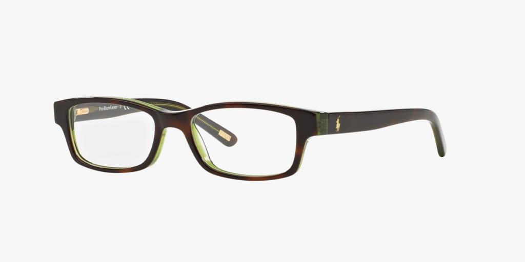 Polo Prep PP8518 Dark Havana On Transp Green Eyeglasses