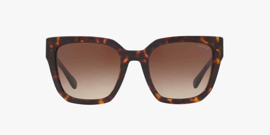 Coach HC8249 53 L1049 Dark Tortoise Sunglasses