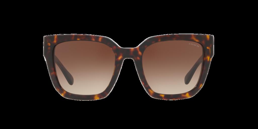 Imagen para HC8249 53 L1049 de LensCrafters |  Espejuelos y lentes graduados en línea