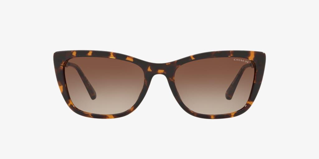 Coach HC8257U 55 L1065 Dark Tortoise Sunglasses
