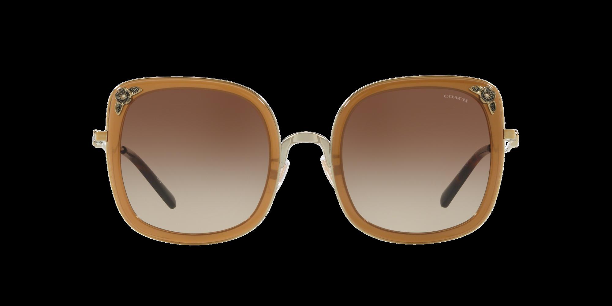 Imagen para HC7101B 53 L1081 de LensCrafters |  Espejuelos, espejuelos graduados en línea, gafas