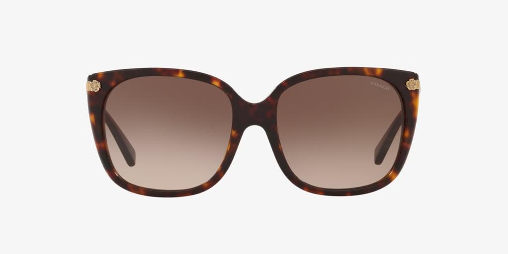 Coach HC8272 56 L1097 Dark Tortoise Sunglasses
