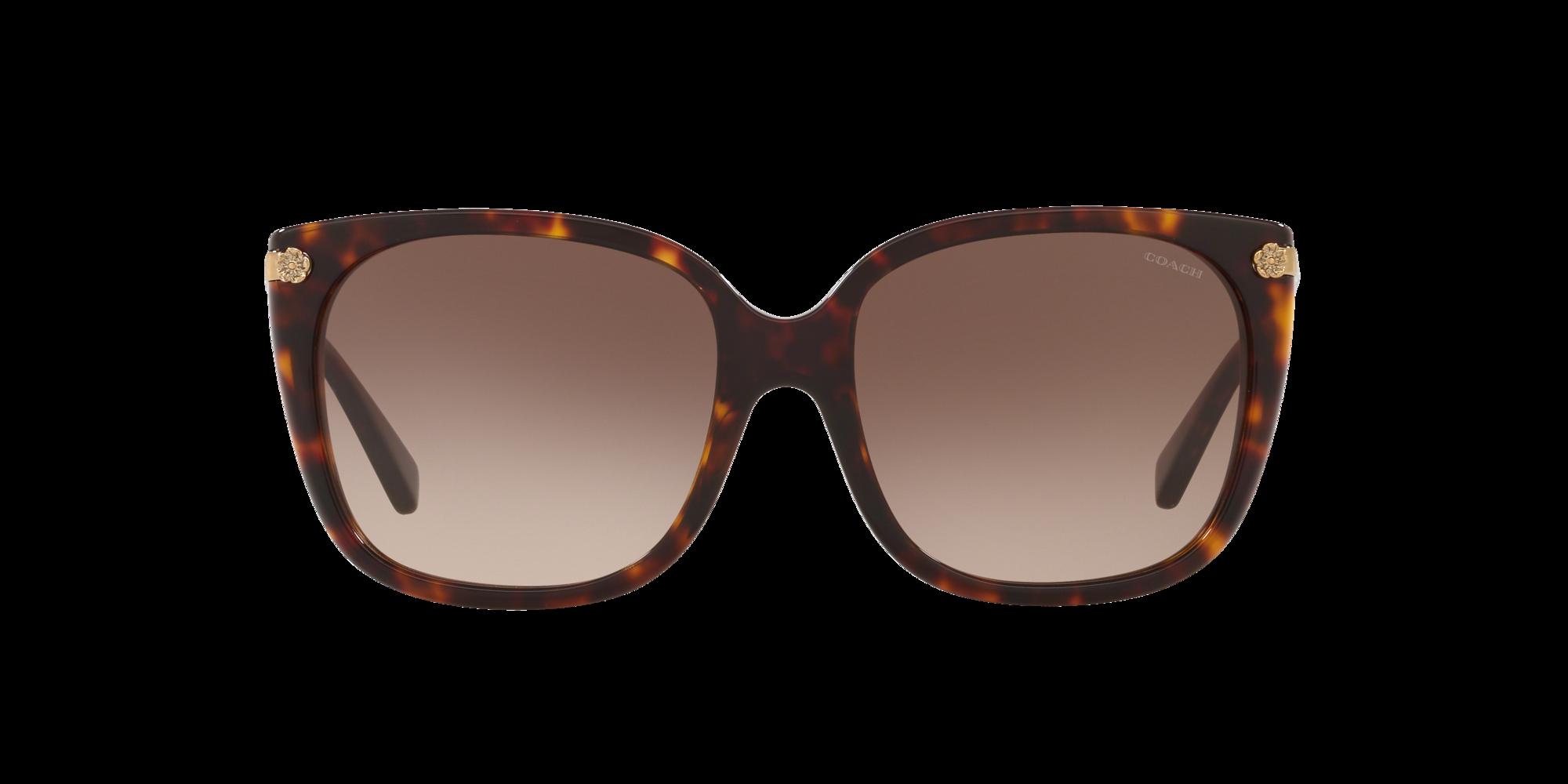 Image for HC8272 56 L1097 from LensCrafters   Glasses, Prescription Glasses Online, Eyewear