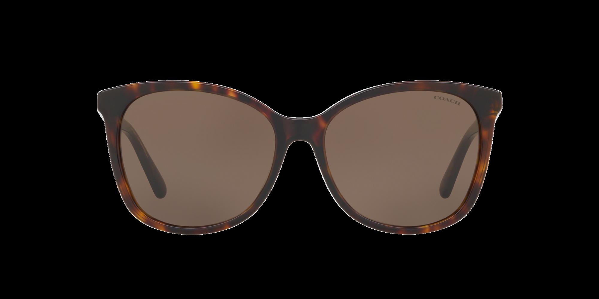 Imagen para HC8271U 57 L1101 de LensCrafters |  Espejuelos, espejuelos graduados en línea, gafas