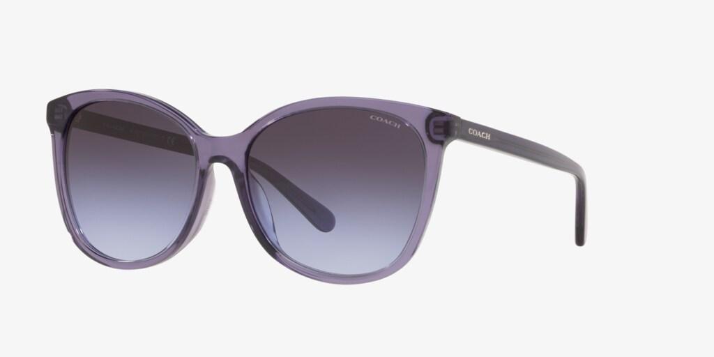 Coach HC8271U 57 L1101 Transparent Violet Sunglasses