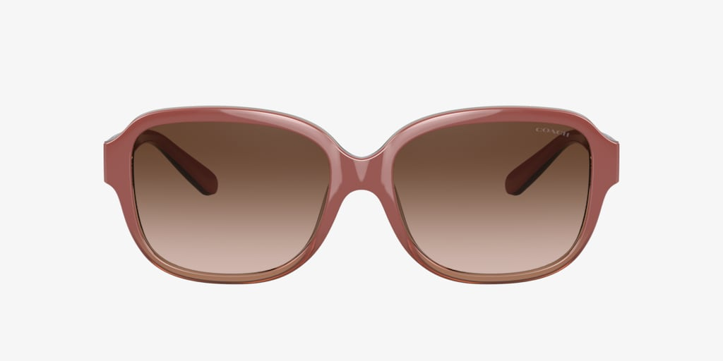 Coach L1153 Transparent Brown Sunglasses