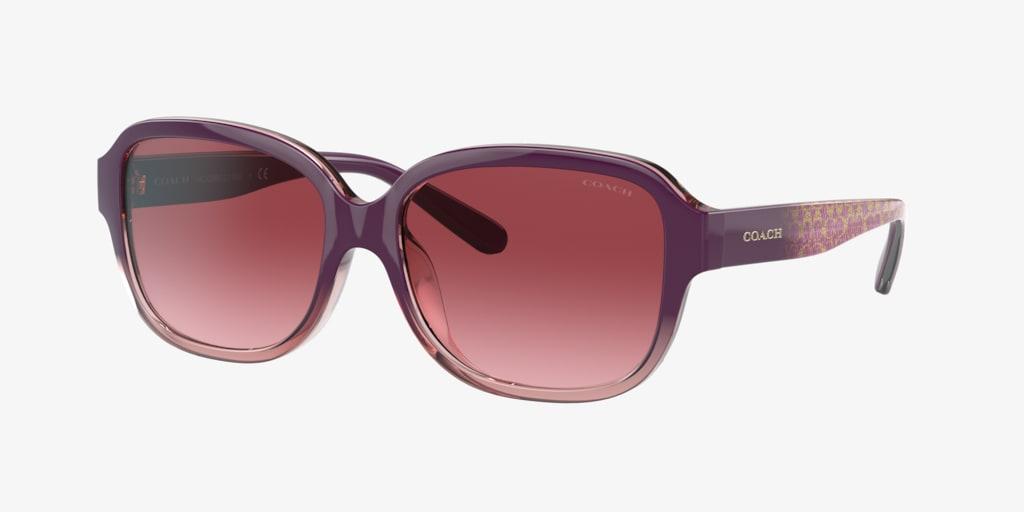 Coach L1153 Transparent Pink Sunglasses