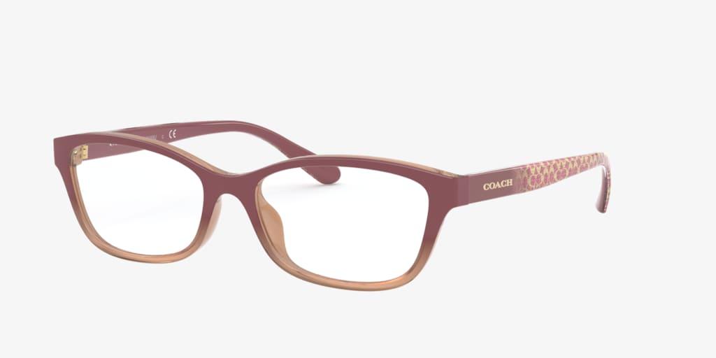 Coach HC6159U Transparent Brown Eyeglasses