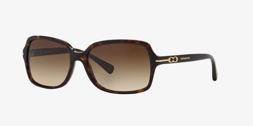 Coach HC8116 56 Dark Tortoise Sunglasses