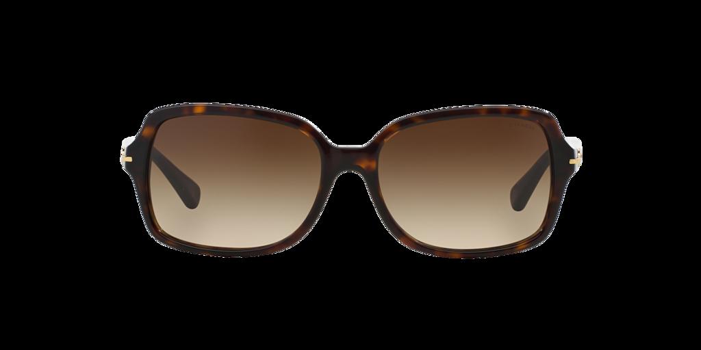 Imagen para HC8116 56 de LensCrafters |  Espejuelos, espejuelos graduados en línea, gafas