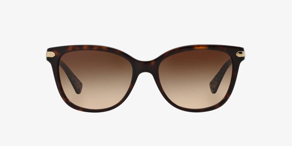 Coach HC8132 57 L109 Dark Tortoise Sunglasses