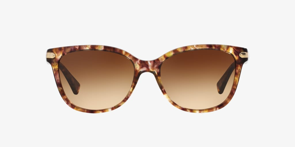 Coach HC8132 57 L109  Sunglasses