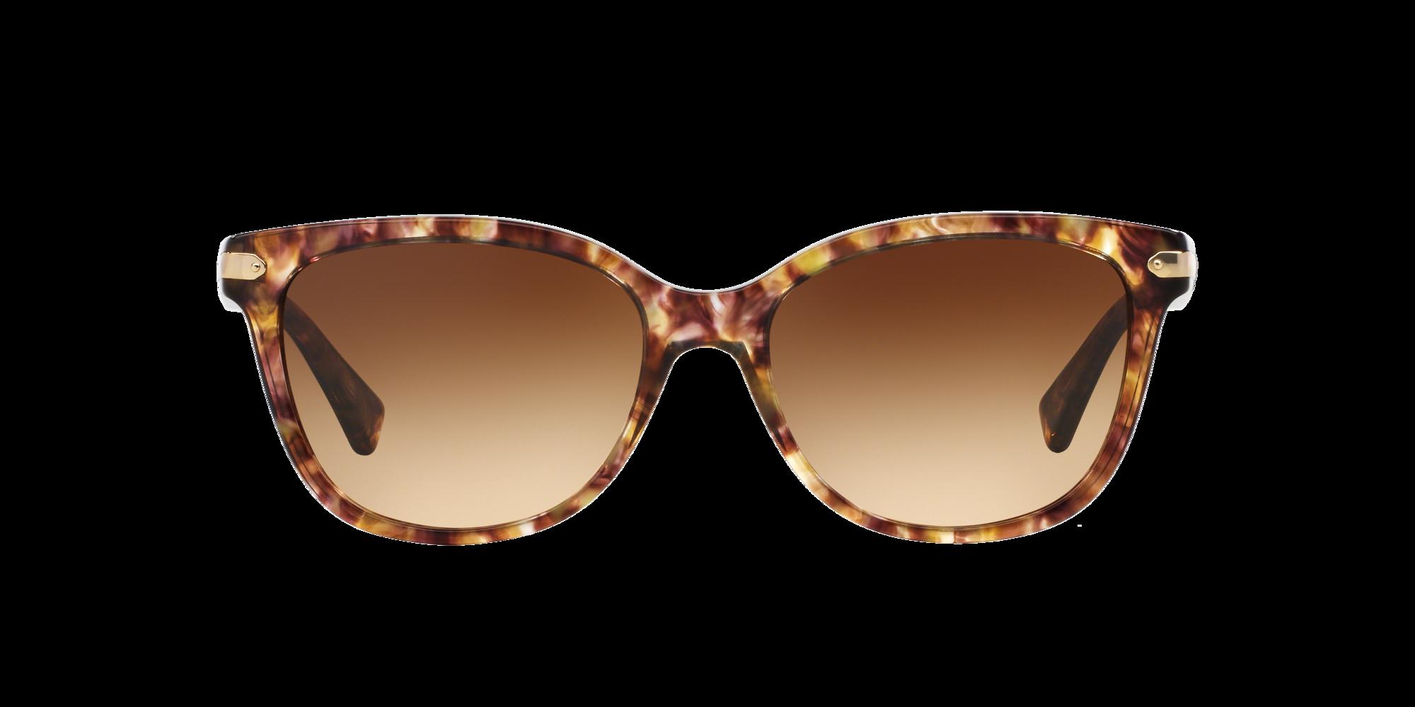 Imagen para HC8132 57 L109 de LensCrafters    Espejuelos, espejuelos graduados en línea, gafas
