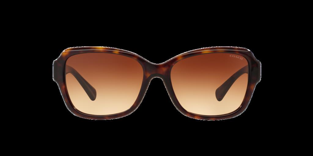 Image for HC8160 56 L145 from LensCrafters | Eyeglasses, Prescription Glasses Online & Eyewear