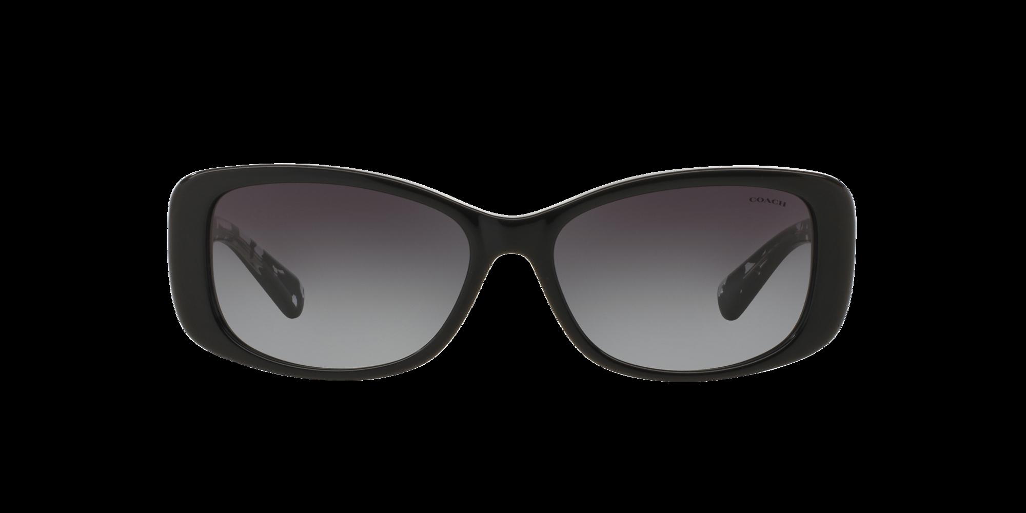 Image for HC8168 56 L156 from LensCrafters | Glasses, Prescription Glasses Online, Eyewear