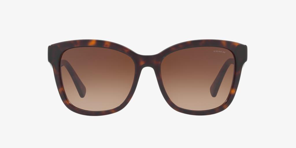 Coach HC8219 56 L1656 Tortoise Sunglasses
