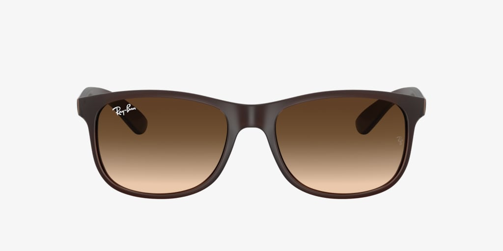 Ray-Ban RB4202 55 ANDY Matte Brown Sunglasses