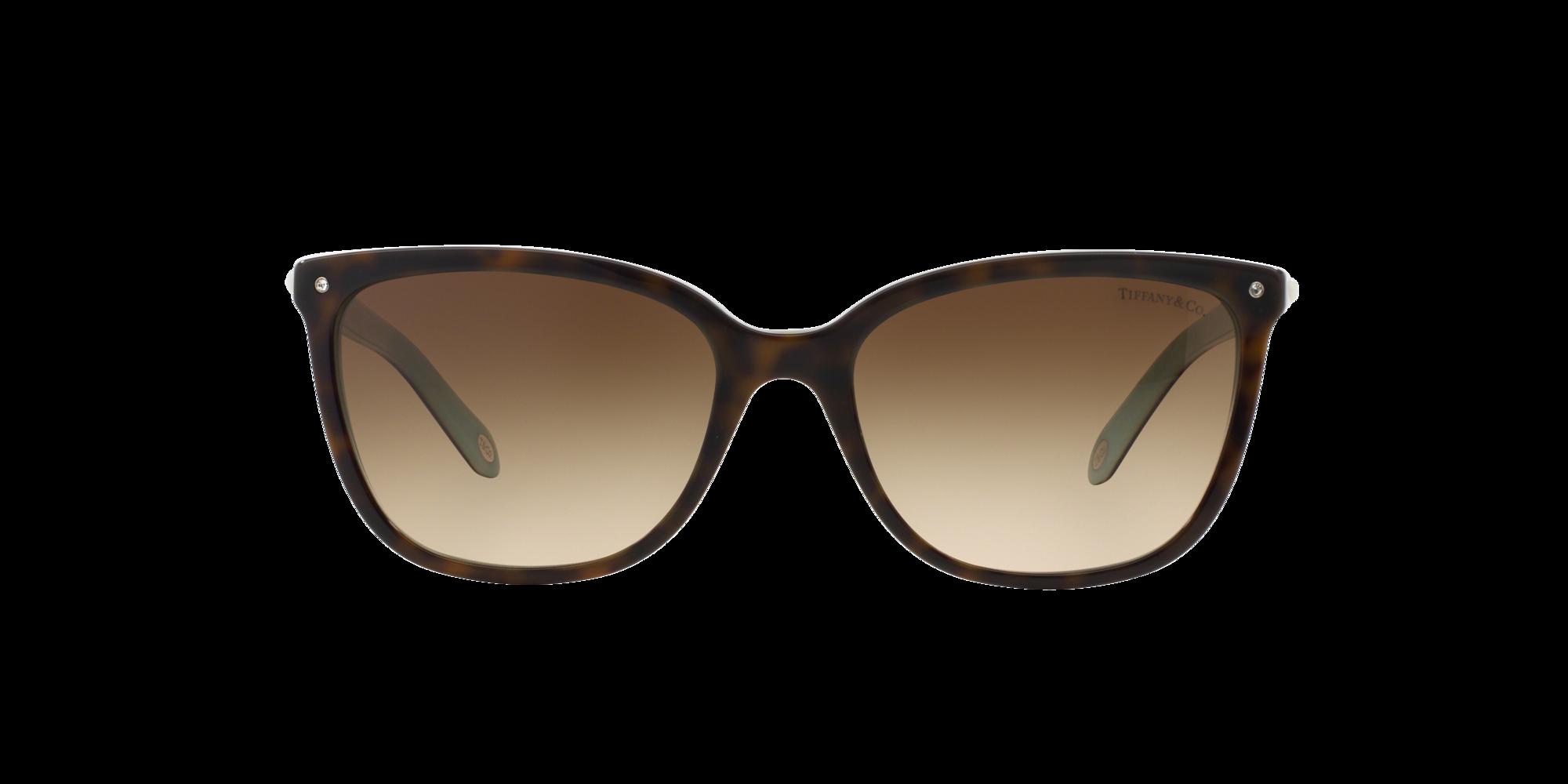 Imagen para TF4105HB 55 de LensCrafters |  Espejuelos, espejuelos graduados en línea, gafas