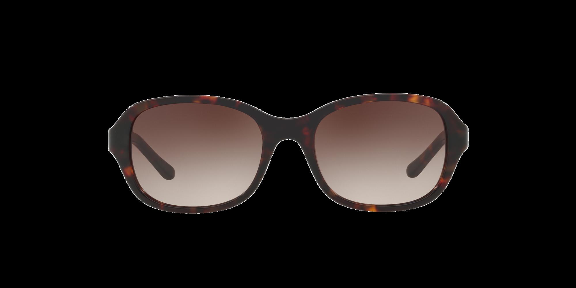 Imagen para SF5503S 51 de LensCrafters |  Espejuelos, espejuelos graduados en línea, gafas