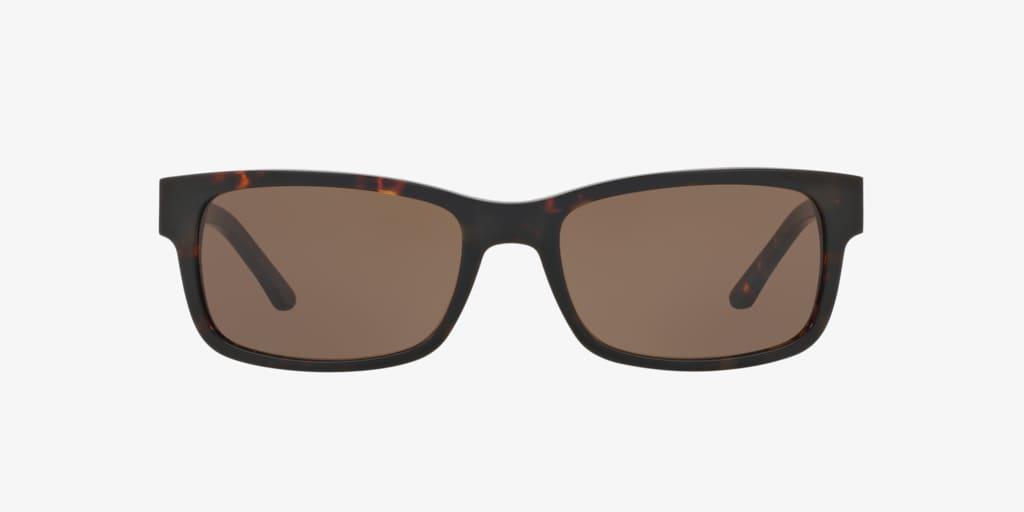 Sferoflex REF ARTICLE 100510 Dark Havana Sunglasses