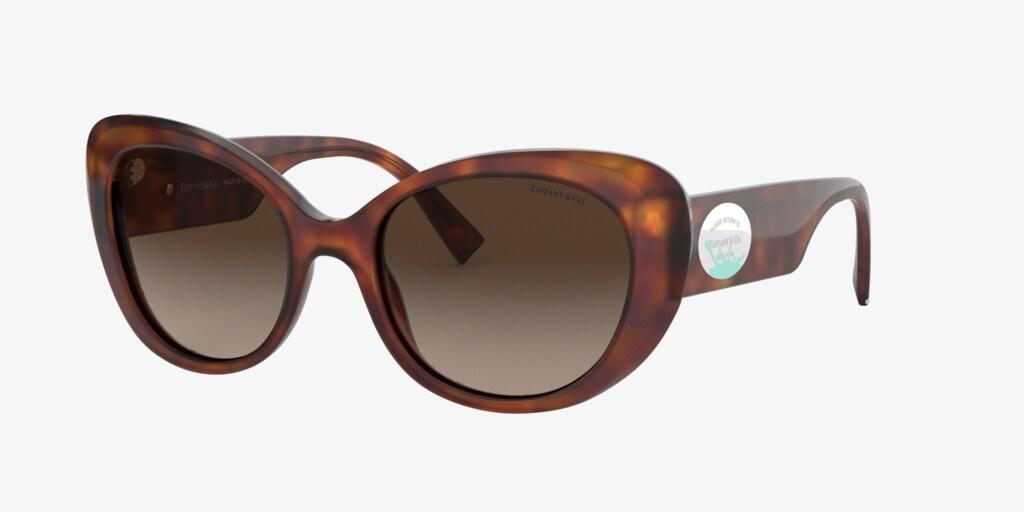Tiffany TF4153 54 Havana Sunglasses
