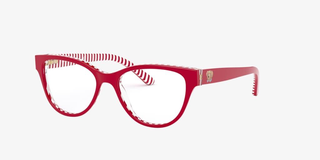 Polo Prep PP8539  Eyeglasses